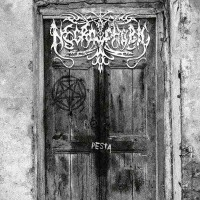 Pesta  [Single]