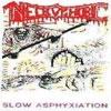 Slow Asphyxiation  [Demo]
