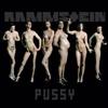 Pussy  [Single]