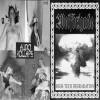 Wolfbrigade/Audio Kollapse  [VA]