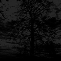 Demo Session - VI - Rebirth Ritual In C Minor  [Demo]